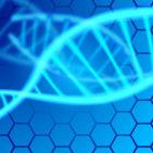 遺伝的高血圧が短命リスク発表(大阪大学と東京大学など)