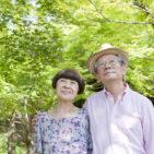 NTT、高齢者の安否をLED確認