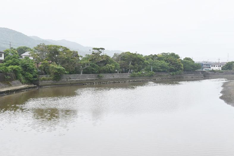 汐留公園。沼野玄昌の遺体は河口近くで見つかった